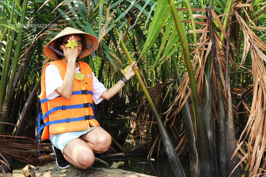 Image: Seven-sample coconut forest - Hoi An