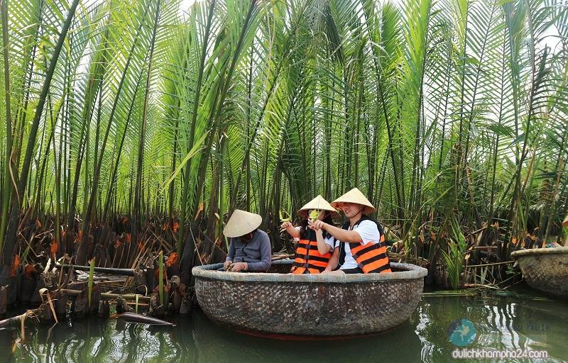Take the basket to visit the coconut forest